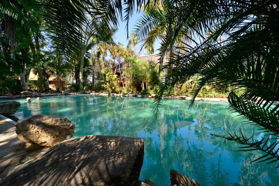 Makutsi outdoor pool